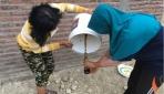 KKN PPM UGM Memanfaatkan Limbah Buah dan Sayur sebagai Pupuk Organik Cair