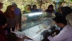 Fakultas Biologi Beri Pelatihan Tanam Anggrek In Vitro kepada Warga Banyunganti