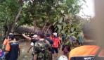 FAPET UGM Kirim Tim Penyelamatan Ternak di Gunungkidul